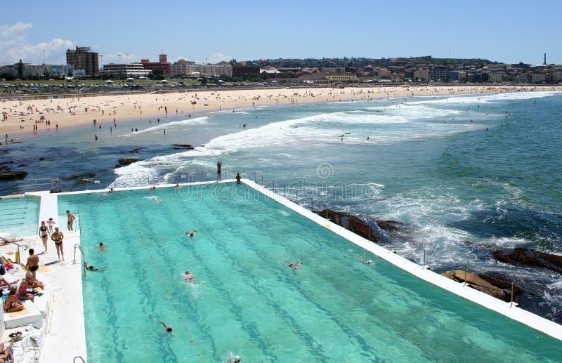 Australia Bondi Icebergs Pool royalty free stock images