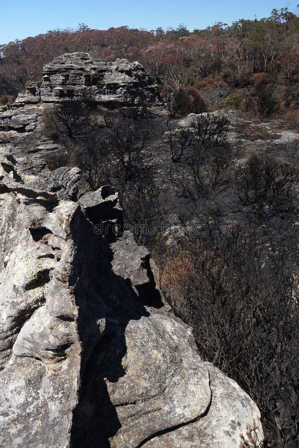 Australia bush fire: rocks burnt trees royalty free stock photos