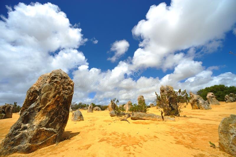 Australia - desierto de los pináculos fotos de archivo