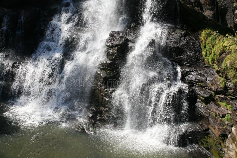 australia falls ebor zdjęcie royalty free