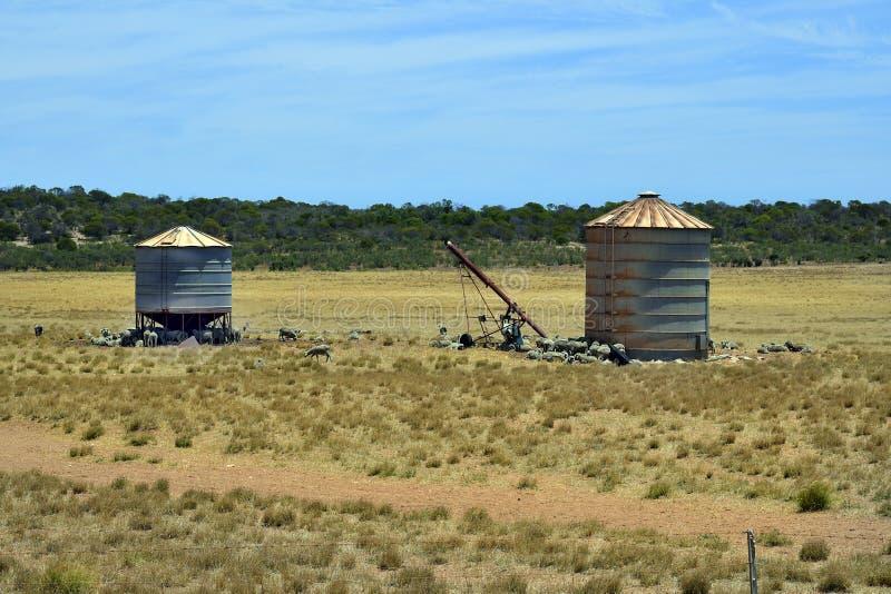 Australia, Western Australia, Farm stock images