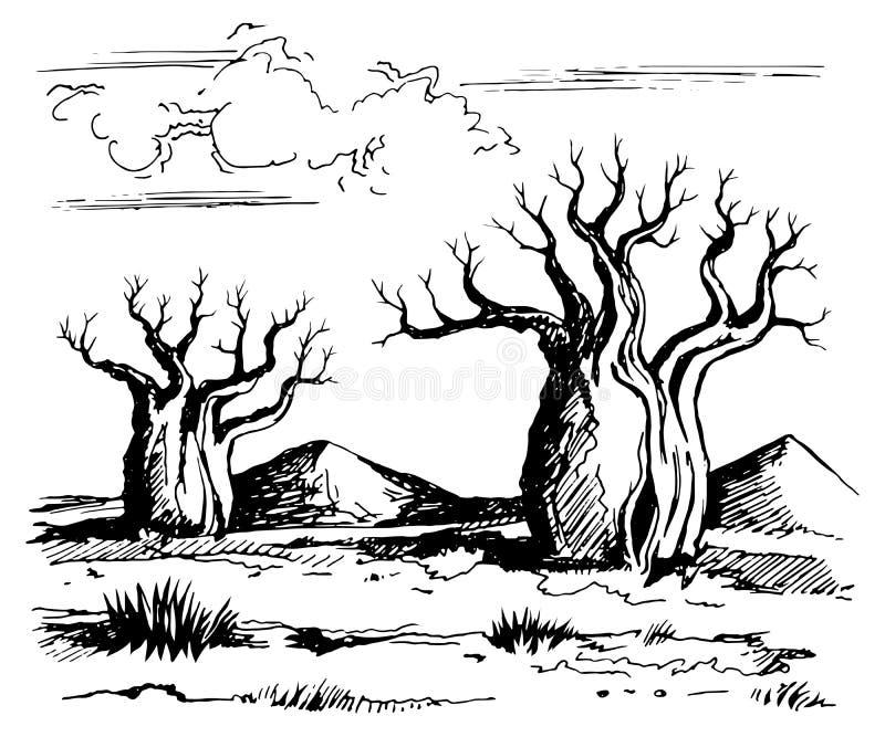 Australia landscape with baobab trees. Vector sketch drawing linear gel pen royalty free illustration