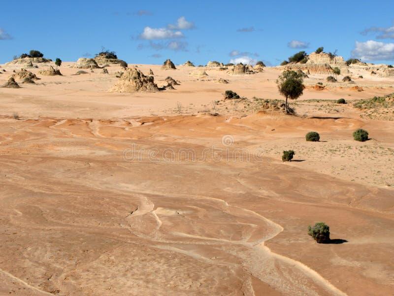 australia pustyni parku narodowego willandra jezior obrazy stock