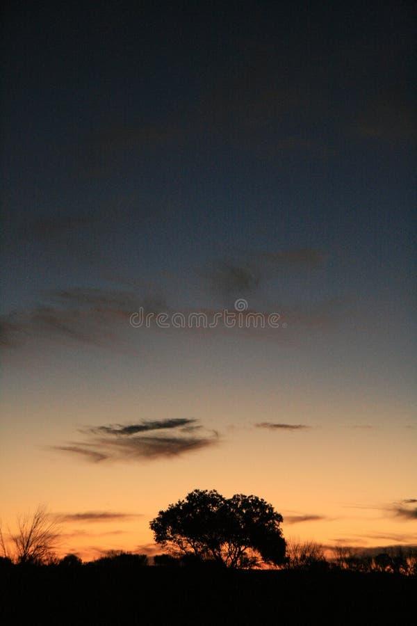 australia pustyni słońca zdjęcia stock