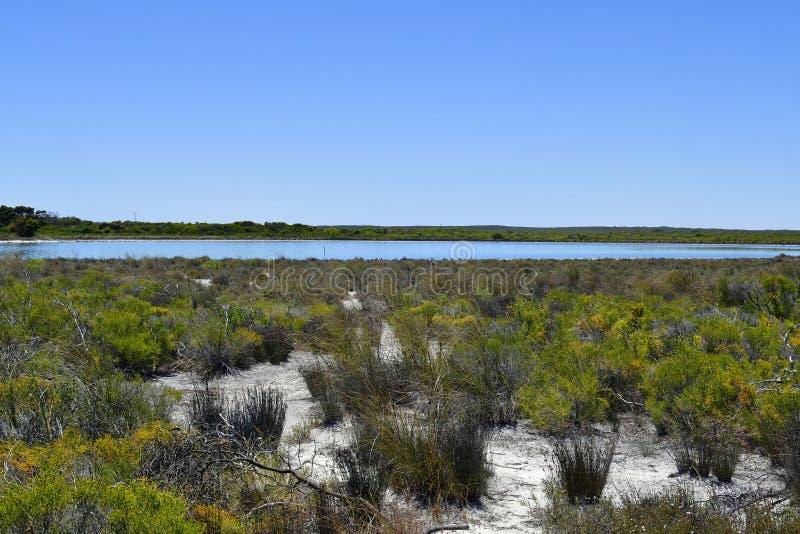 Australia, Botany, Lake Thetis stock photography