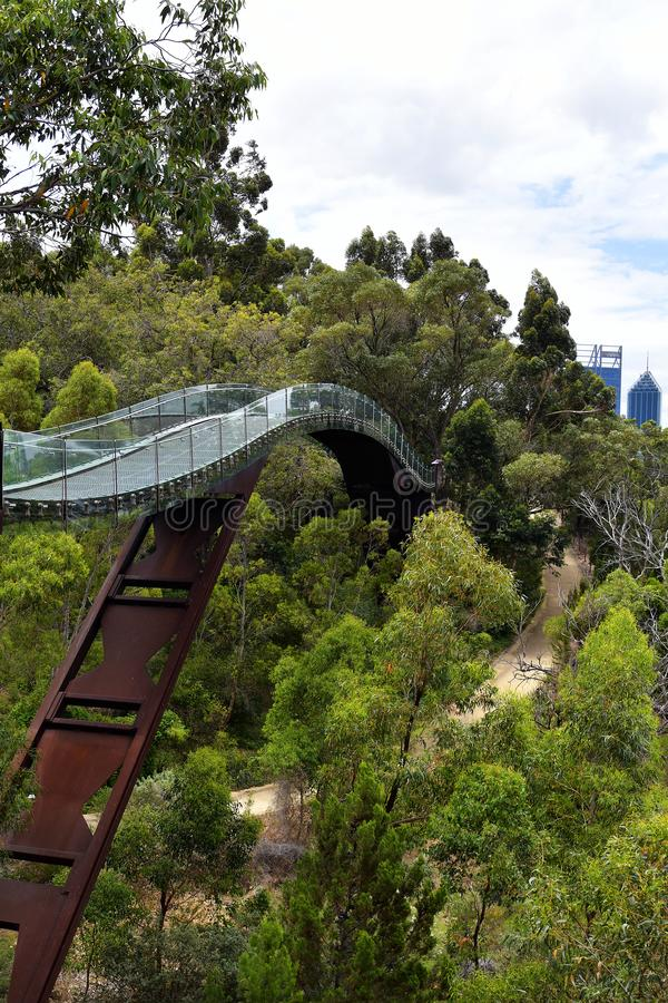 Australia, WA, Perth, Kings Park. Australia, Perth, tree top walk with glass bridge in public Kings Park, a preferred tourist attraction in the capital of stock photography