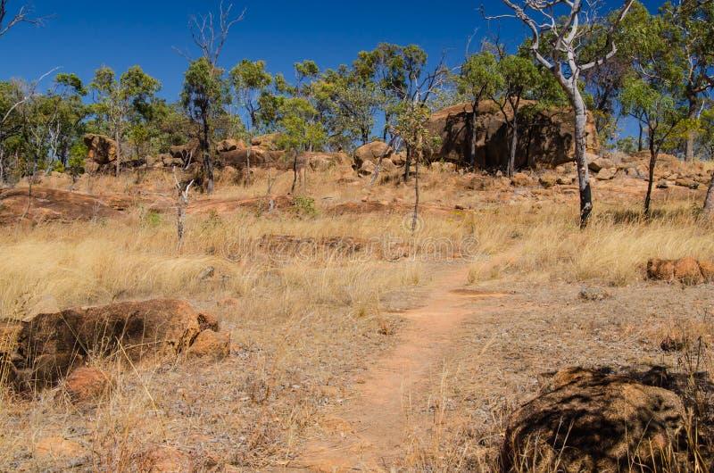 Australia, wycieczkuje w odludziu, Undara Powulkaniczny park narodowy fotografia stock