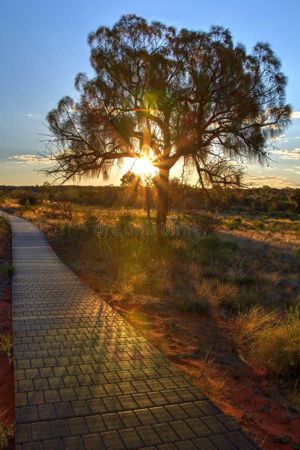 Australia, zmierzch przy królewiątko jarem, Watarrka park narodowy fotografia stock