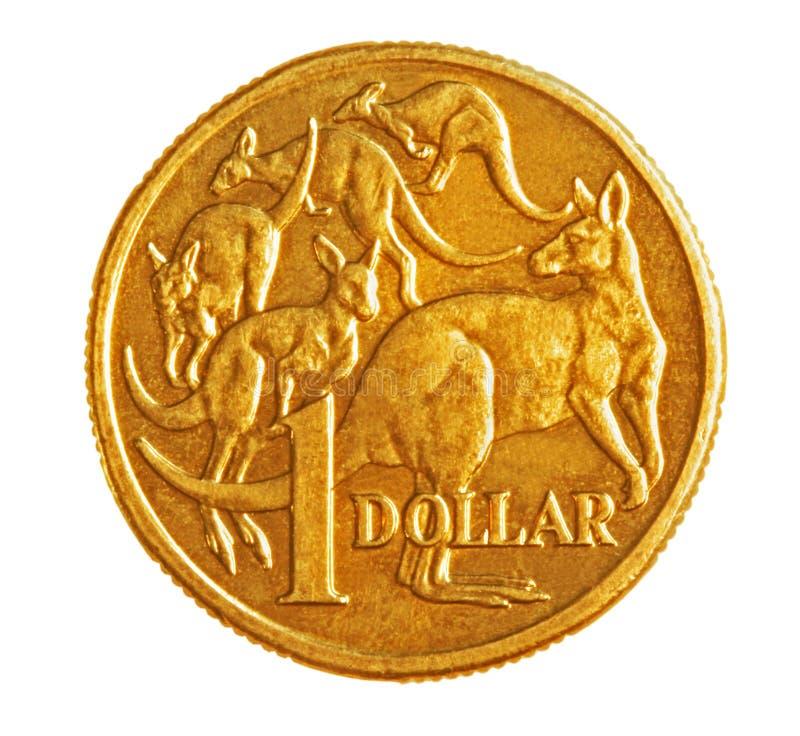 Australian $1 Coin. A bronze Australian one dollar coin, isolated on white stock image