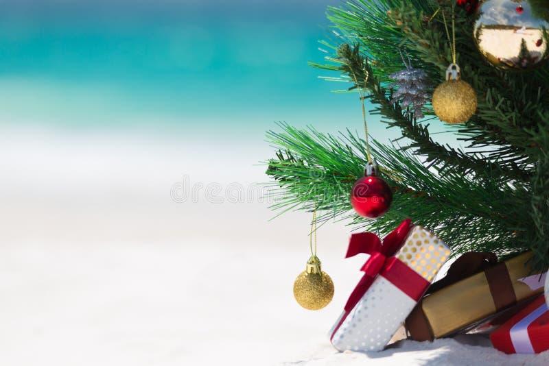 Australian Beach Christmas stock images