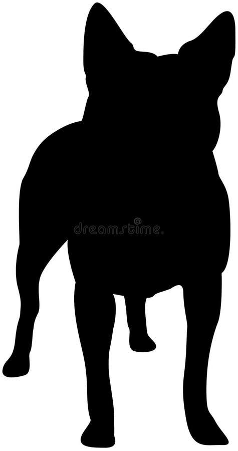 Australian Cattle Dog Silhouette Stock Images