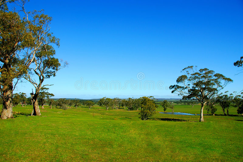 Australian countryside. royalty free stock photos