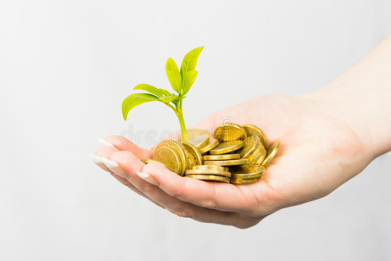 Australian currency. Lady holding coins and small tree royalty free stock photos