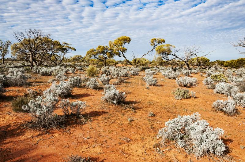 The Australian desert, the outback. The red center in the australian desert, the outback in Northern Territory stock photography
