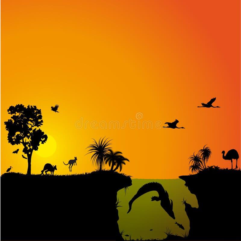 Australian fauna and flora stock illustration