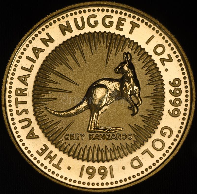 Australian Kangroo Gold Coin on Black Background stock photography