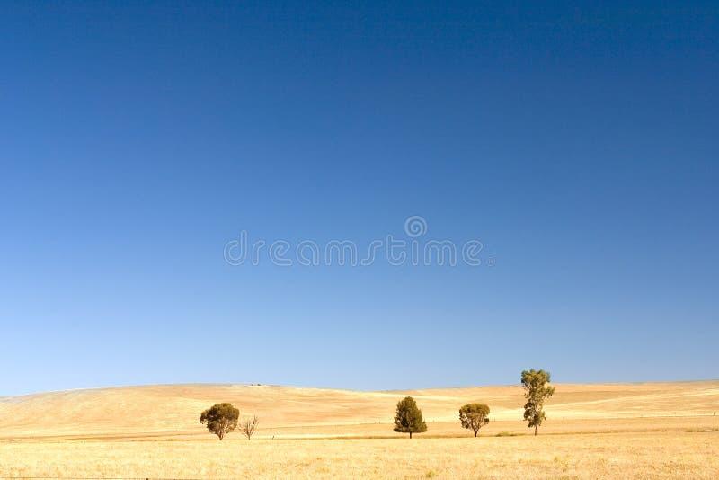 Australian Landscape. Shot near Flinders Ranges, Australia stock photography