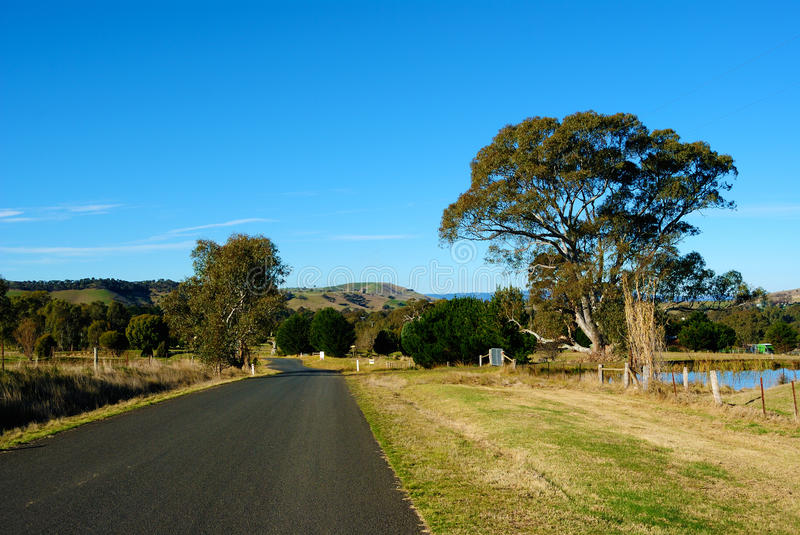Australian Outback. Picture of Bright and Sunny Day in the Australian Outback stock photo