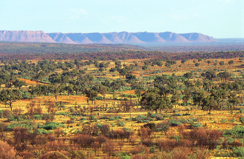 Australian outback. And Kings canyon, Red Center royalty free stock photo