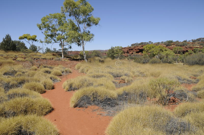 Australian outback. The Australian outback belongs to the oldest landscapes on earth royalty free stock photography