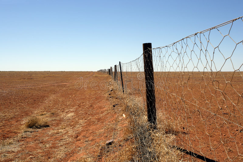 Australian outback Dingo fence. An image of the Dingoe fence in the Australian Outback. The fence is 9600 kilometres long and spans the entire country, keeping stock photos