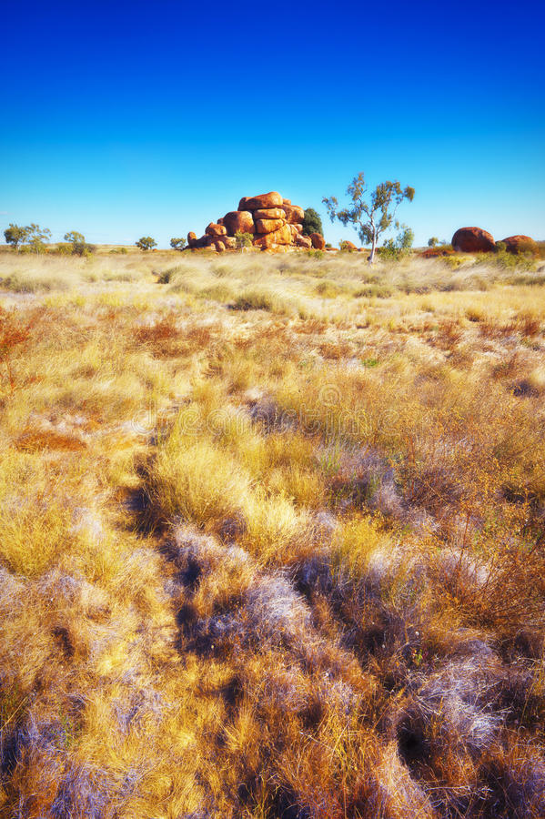 Australian Outback. View of the beautiful landscape in the Australian outback stock image