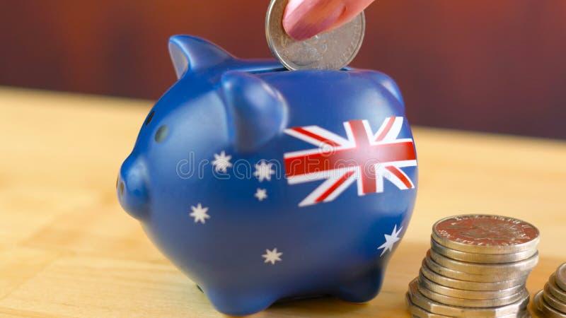 Australian piggy bank and coins savings concept, closeup. royalty free stock photo