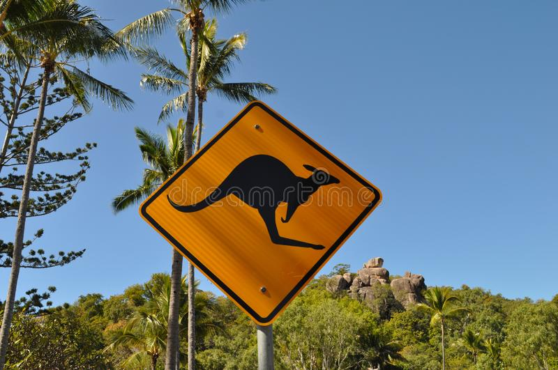Australian road sign, be aware of kangaroos. Iconic kangaroo warning sign, with palm trees and copy space in blue sky.  Tropical North Queensland, Australia stock photography