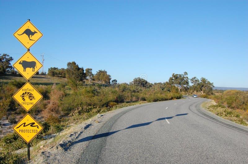 Australian road signs stock image