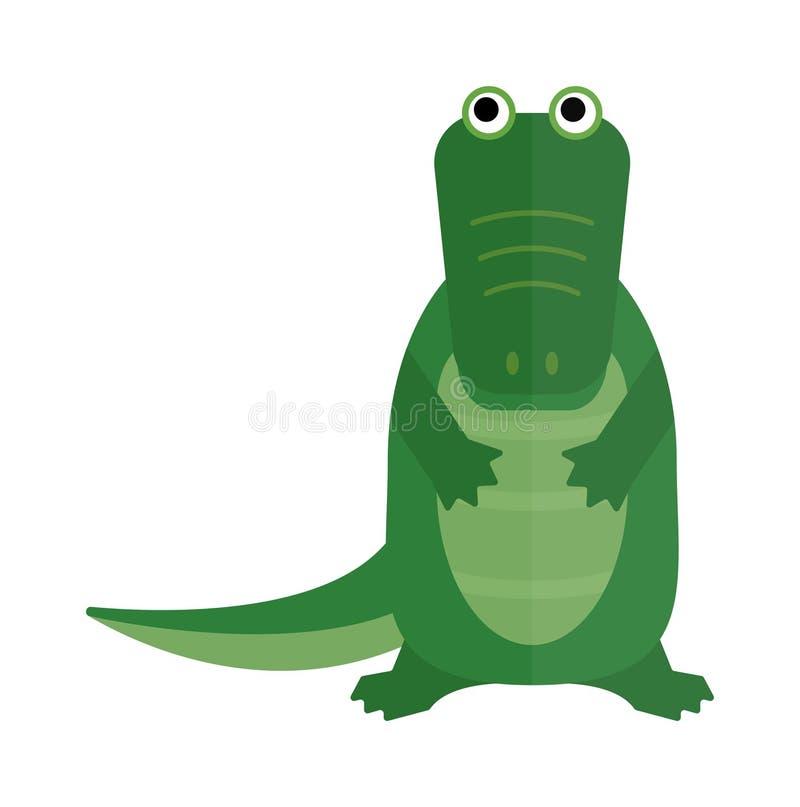 Australian saltwater green crocodile cartoon flat vector illustration. stock illustration