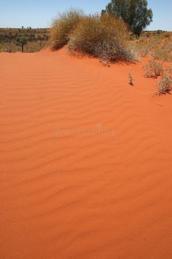 Australian sandbank royalty free stock photos