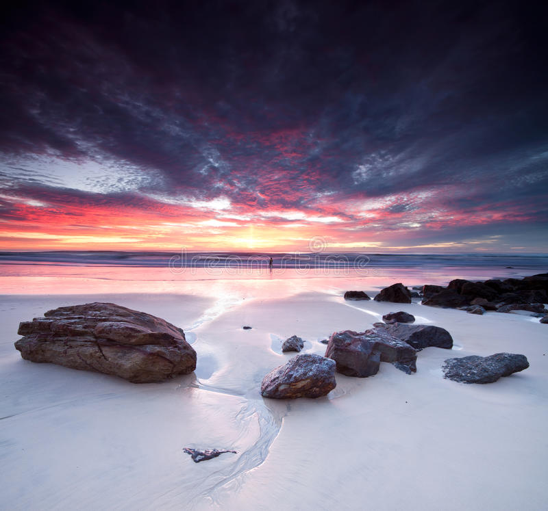 Australian seascape at dawn on square format royalty free stock image