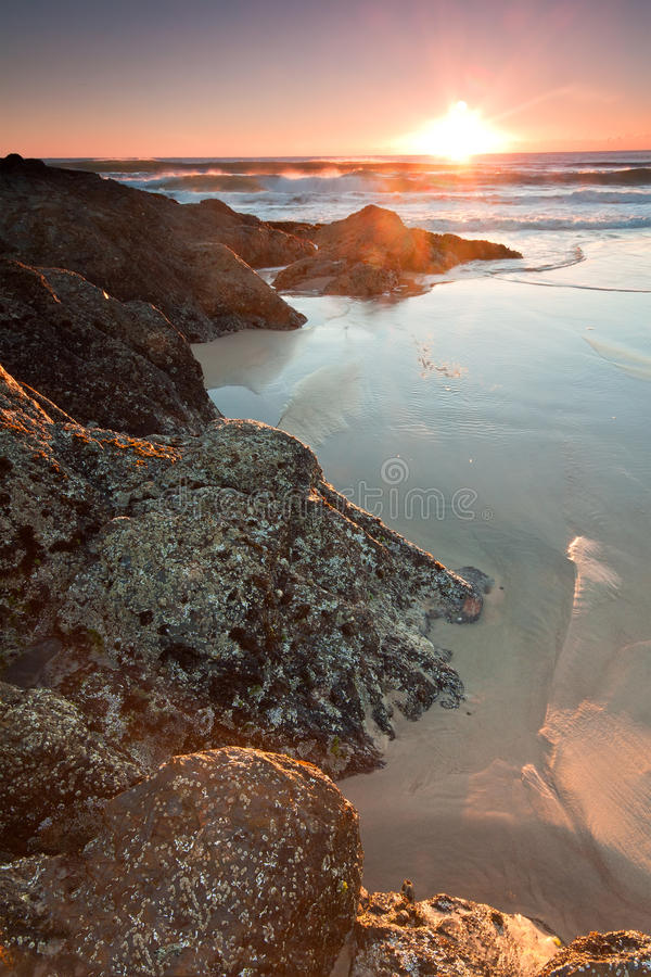 Australian seascape at sunrise at vertical format royalty free stock image