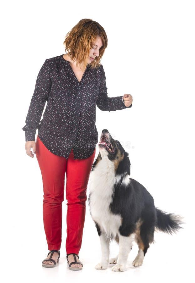 Australian shepherd and woman stock photo