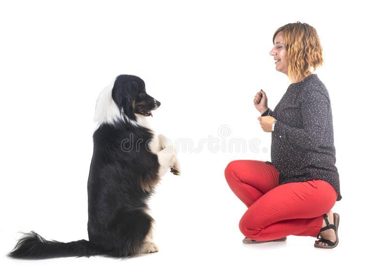 Australian shepherd and woman stock images