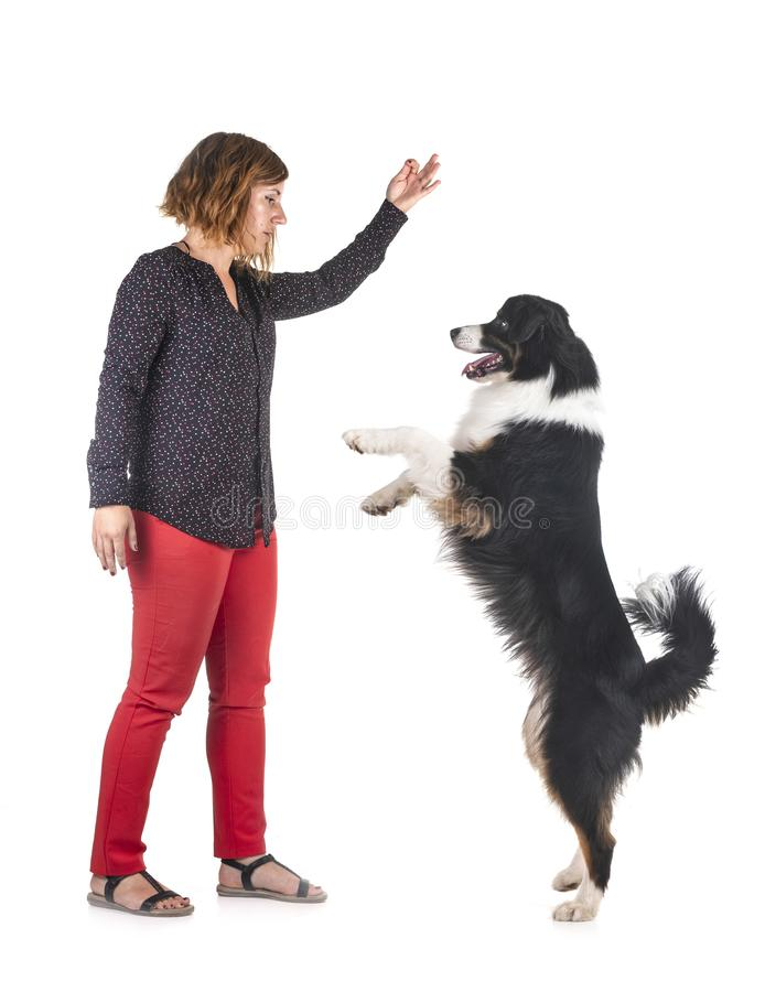 Australian shepherd and woman royalty free stock image