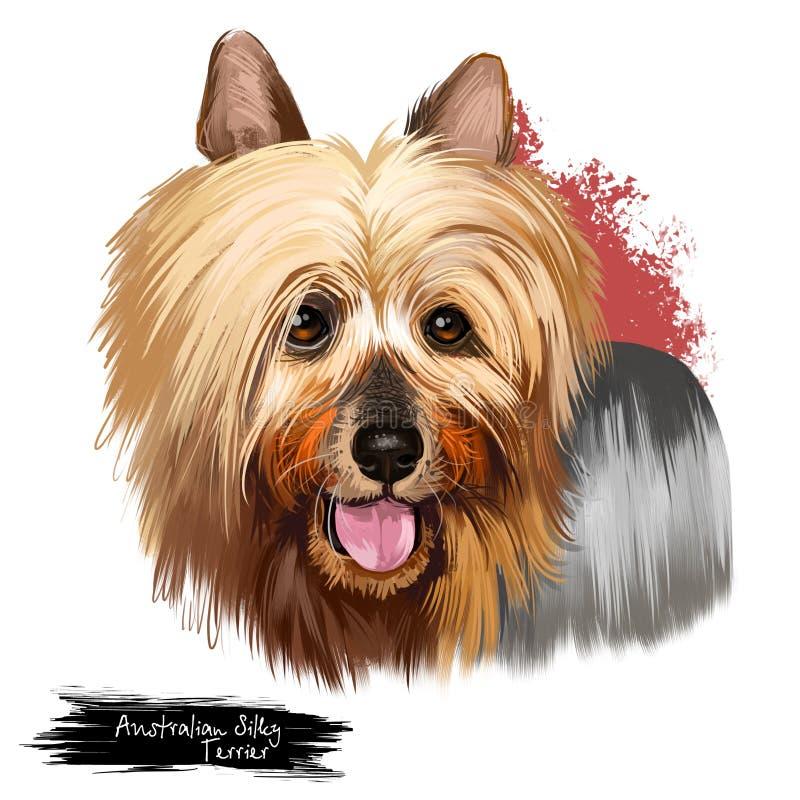 Australian Silky Terrier dog breed digital art illustration isolated on white. Small breed of terrier dog type. developed in royalty free illustration