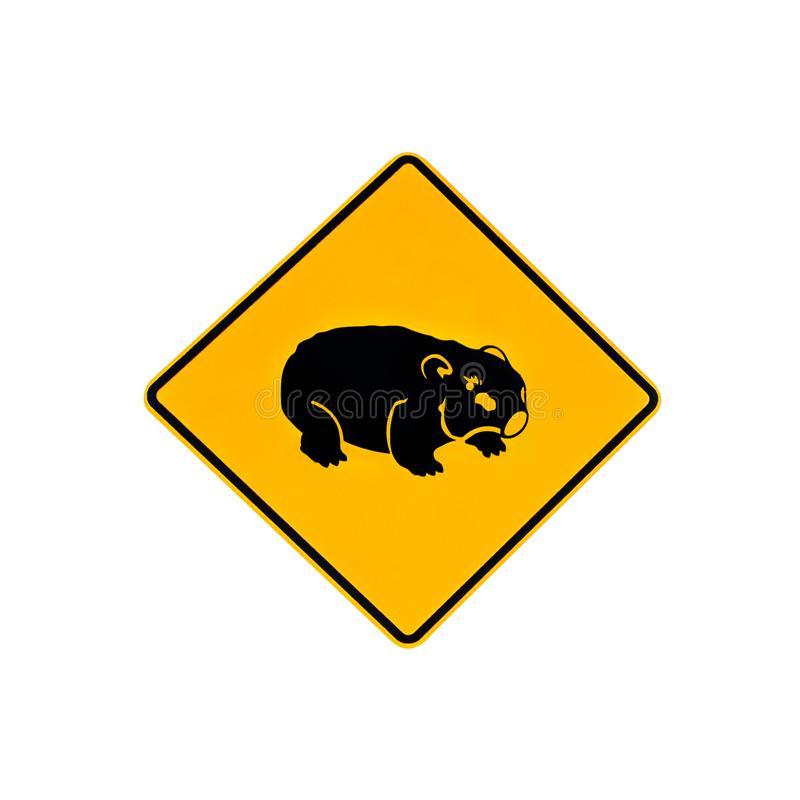 Warning sign of wombat royalty free stock image