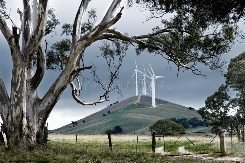 Australian Windfarm royalty free stock images