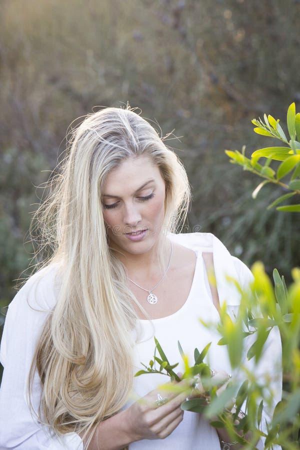 Australiano con l'albero commovente dei capelli biondi lunghi fotografia stock libera da diritti