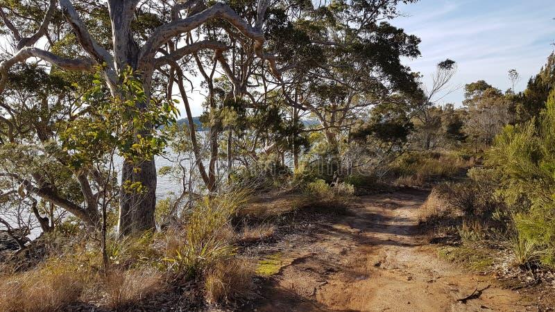 Australie côtière de voie de buisson photos stock