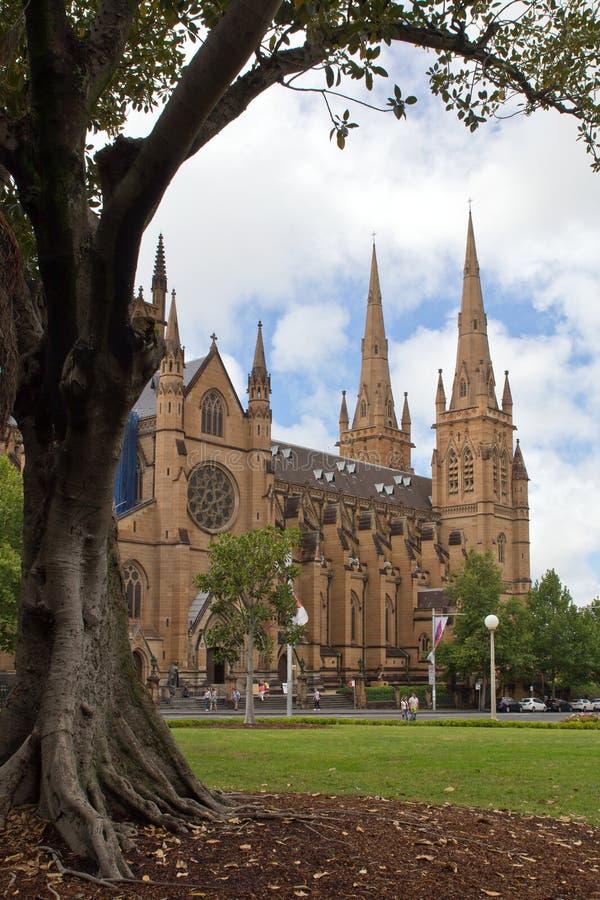 Australie, cathédrale du ` s de Sydney, St Mary images stock