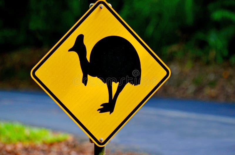 Australie d'avertissement du Queensland de connexion de casoar photo stock