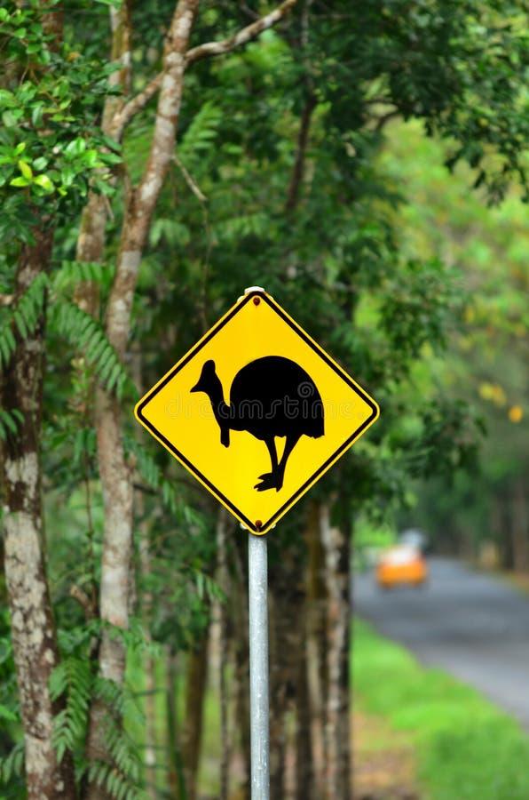 Australie d'avertissement du Queensland de connexion de casoar photographie stock libre de droits