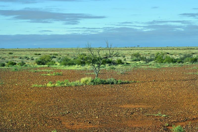 https://thumbs.dreamstime.com/b/australie-du-sud-%C3%A0-l-int%C3%A9rieur-paysage-112061661.jpg