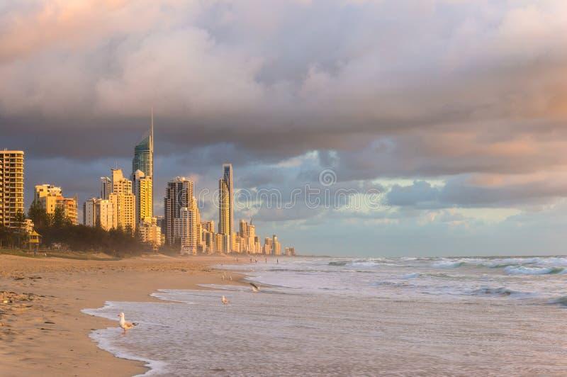 Australie, lever de soleil de ville de la Gold Coast de la plage image libre de droits