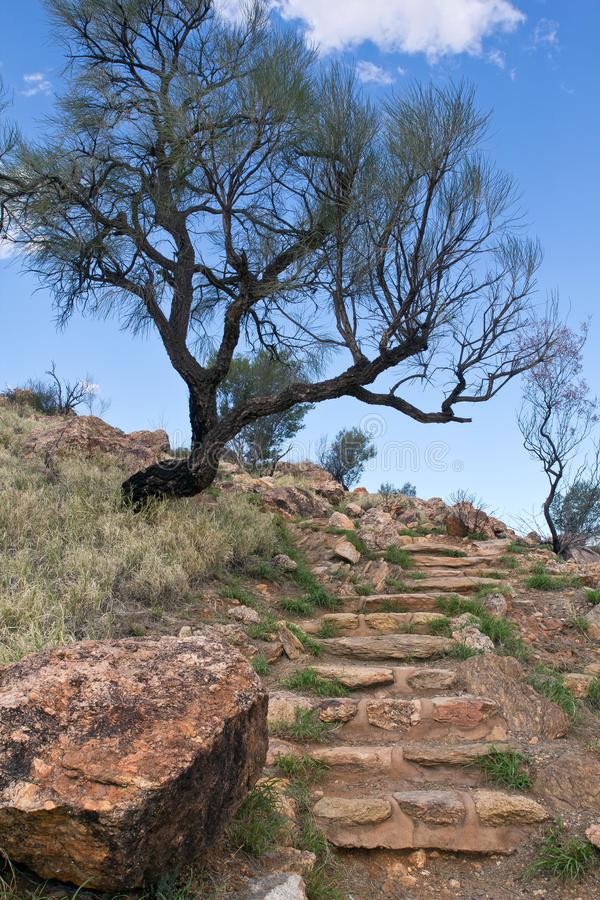Australie, territoire du nord, Alice Springs, Anzac Hill photographie stock libre de droits