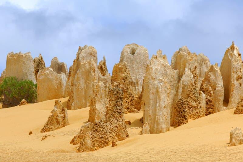 Australien: Berggipfelwüste stockfotos