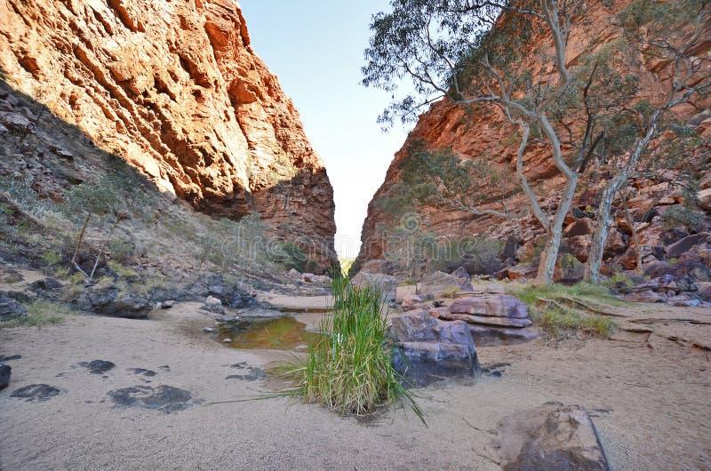 Australien det nordliga territoriet, McDonnell spänner arkivbilder