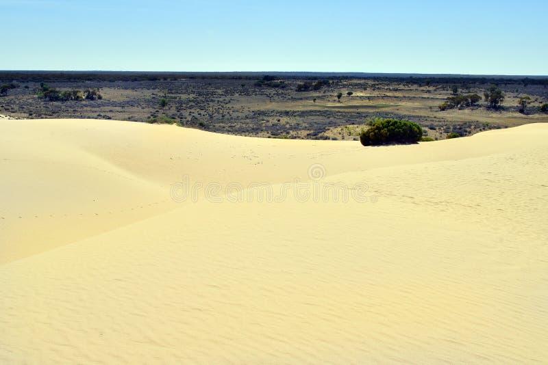 Australien NSW, Mungo National Park arkivbild